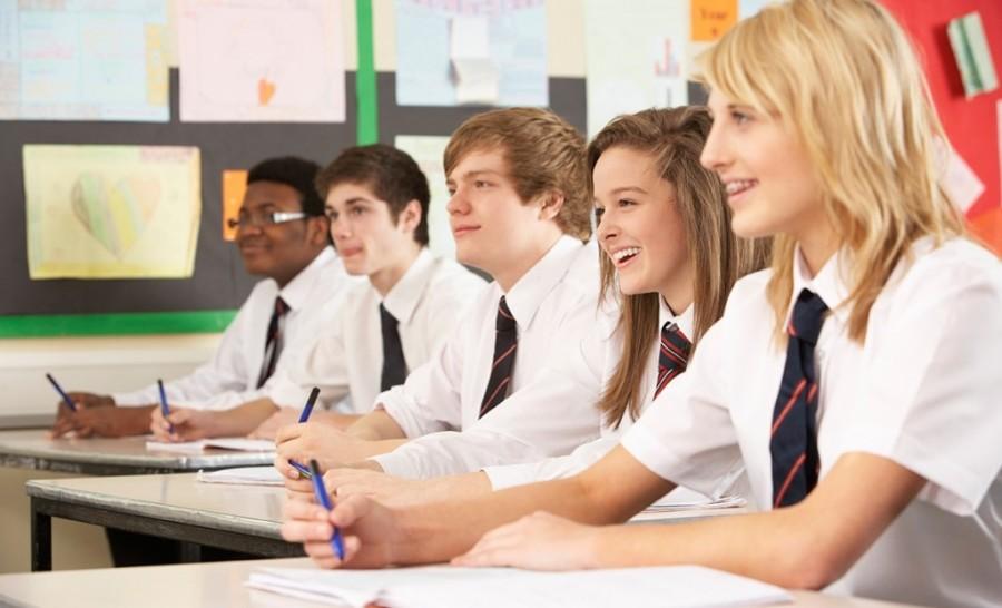 Brazil Education Industry|Brazil Higher EducationMarket