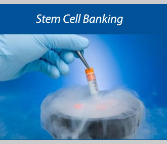 Rising Awareness Uplifting Global Stem Cell Banking Market: Ken Research