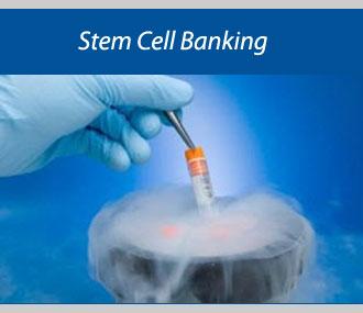 Rising Awareness Uplifting Global Stem Cell Banking Market: KenResearch