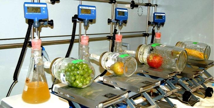 global-ethylene-production