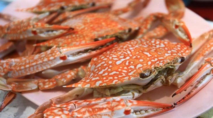 Algeria Seafood Market Research