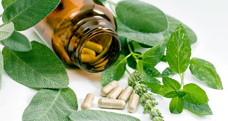 Elevating Demand for Beauty and Weight Loss Supplements Coupled with Economic Stability to Purchase Expensive Nutraceuticals to Drive Nutraceuticals Market in Japan: Ken Research