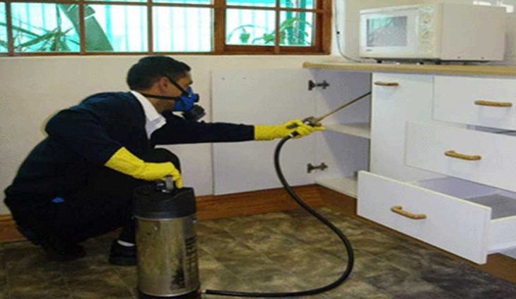 Serbia Home Insecticides Market Research Report