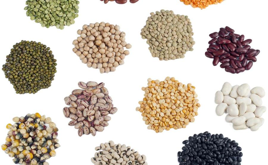 Brazil Seed Market by Technology Type (Open Pollinated, Hybrid Seeds and Genetically Modified) by Crop Type (Soybean, Corn, Wheat, Rice, Cotton, Beans, Forage, Vegetable and Flower Seeds) – Outlook to 2022: Ken Research