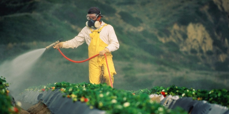 Thailand Crop Protection Market by Type (Pesticides (Herbicides, Insecticides, Fungicides, Others) and Bio-Pesticides (Bio-Chemical Pesticides, Microbial Pesticides, Others)) by Crop Type (Cereal, Vegetable and Forage Crops) – Outlook to 2022: KenResearch