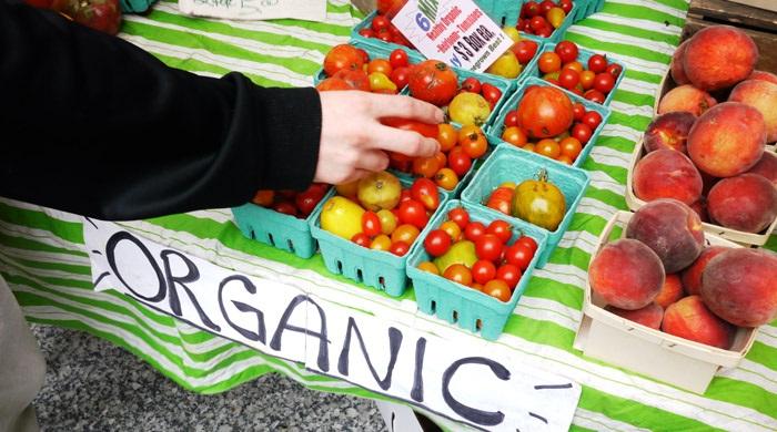 Global Organic Food Beverage Market
