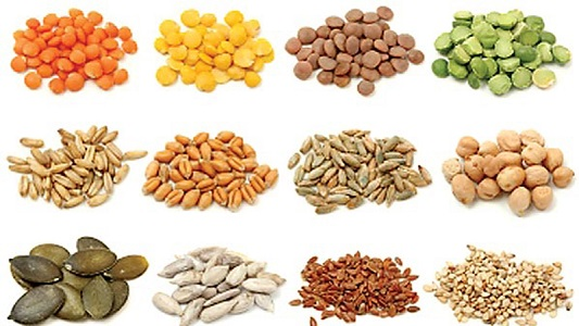 Singapore's Seed Bank Market Outlook-KenResearch