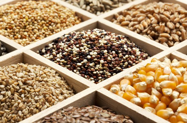 Emergence Of Opv In Seed Industry Market Oulook-Ken Research