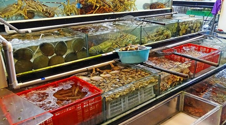 Global Fish & Seafood Industry Market Research Report : Ken Research