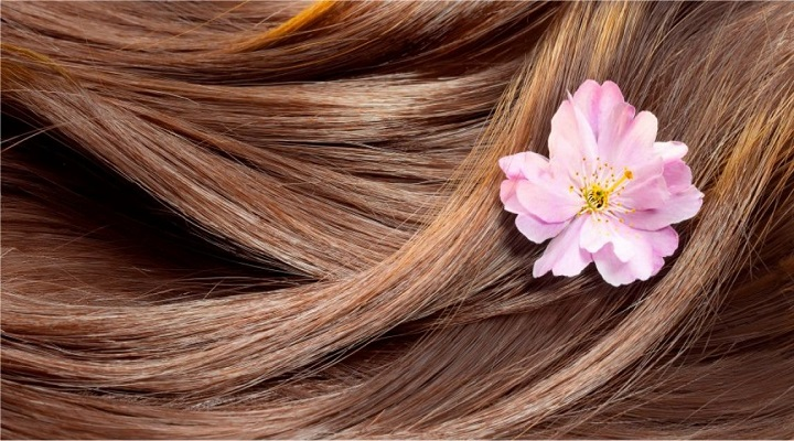 Malaysia Haircare Market Research Report : KenResearch