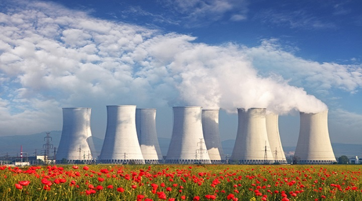 Large Number Of Old Nuclear Reactors Gives New Opportunites In Flex Market Research Report : Ken Research