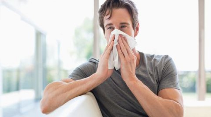 Key Methods to Cure House Dust Mite Allergy Report : KenResearch