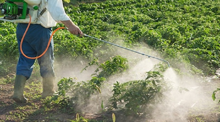 Global Crop Protection Market Outlook: Ken Research