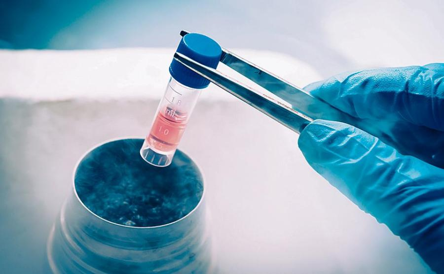 Global Stem Cell Banking Market Research Report & Outlook To 2023: Ken Research