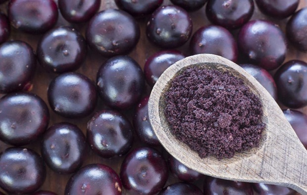 Landscape of the Global ACAI Berry Market Outlook: Ken Research