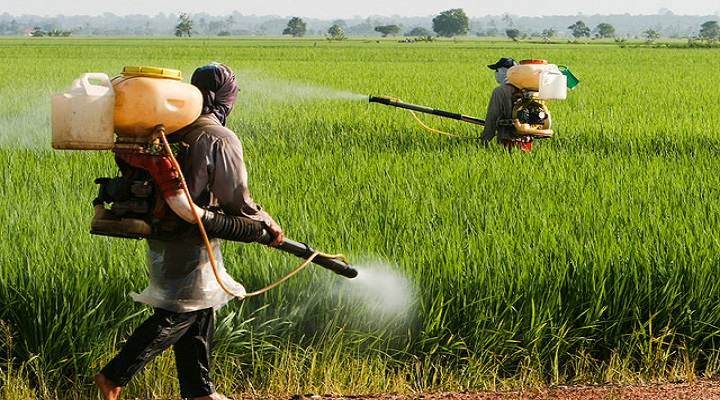 Developed Landscape Of The Crop Protection Market Outlook: Ken Research