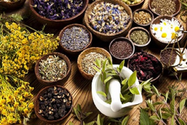 Increase in Demand for Natural Medicines Expected to Drive Global Herbal Medicine Market over the Forecast Period: Ken Research