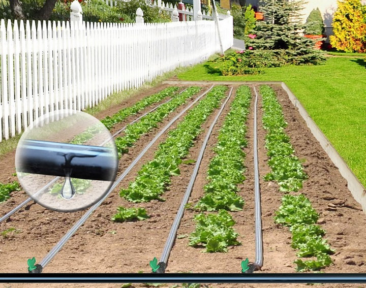 Increase in Crop Yields Expected to Drive Global Agriculture Dripper Market over the Forecast Period: KenResearch