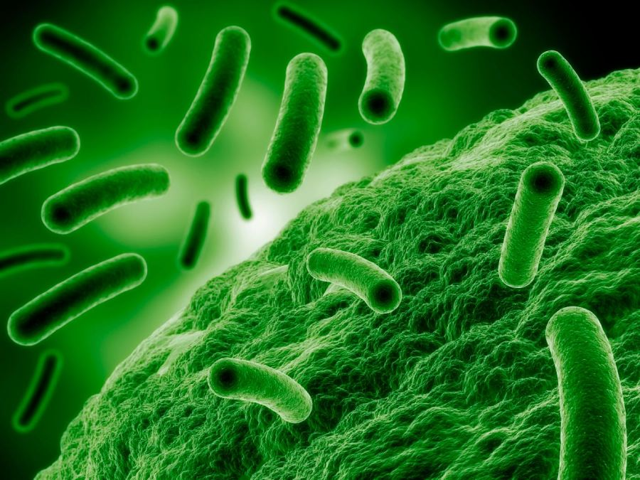 Rapid Growth of Healthcare Industry Anticipated to Drive Global Antimicrobial Additives Market over the Forecast Period: Ken Research