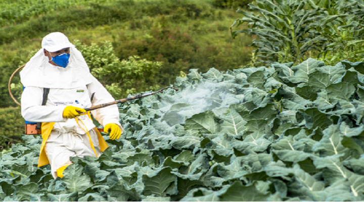 Profitable Insights Of The Crop Protection Market Outlook: Ken Research