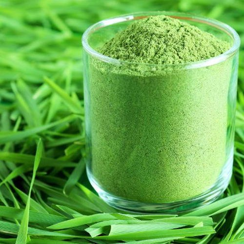 Rise in Health-Conscious Population Anticipated to Drive Global Wheat Grass Powder Market: Ken Research