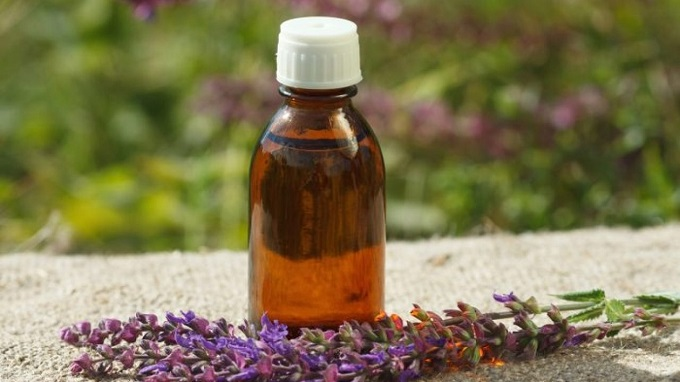 Rise in Usage of Clary Sage as an Oil Anticipated to Drive Global Clary Sage Market: KenResearch