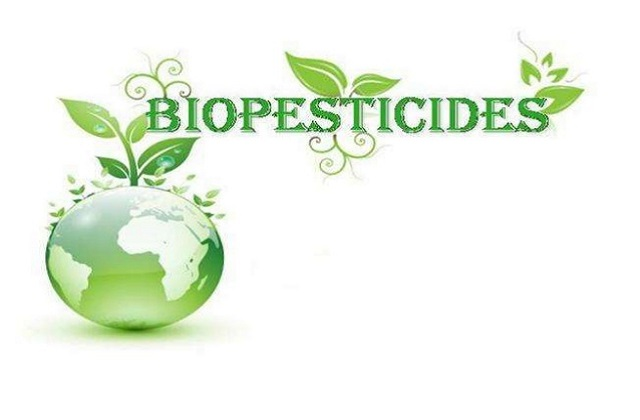 Growing Landscape of Worldwide Biopesticides Market Outlook: Ken Research