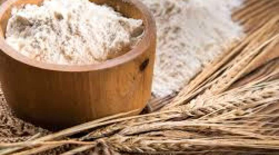 Increase in Awareness for Protein-Rich Diet Anticipated to Drive Global Flour, Rice and Malt Manufacturing Market: KenResearch