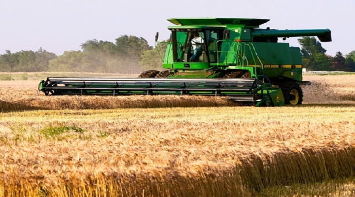 Growth in Insights of Grain Farming Global Market Outlook: Ken Research