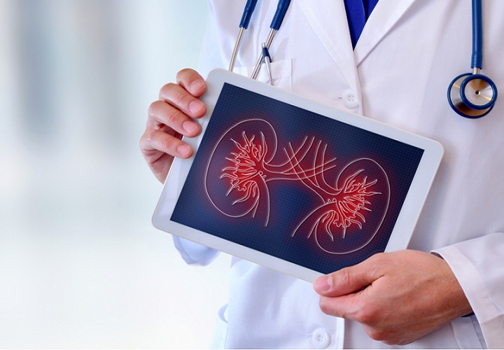 Increase in Prevalence of Chronic Kidney Diseases Expected to Drive Global Nephrology and Urology Devices Market: KenResearch