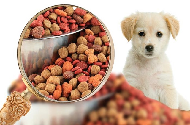 Innovative Pet Food Preparation Techniques to Drive the Pet Food Manufacturing Market: KenResearch