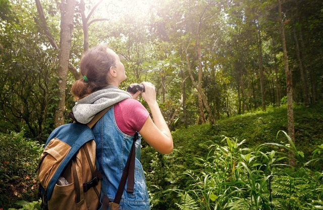 Handsome Growth across the Global Ecotourism Market Outlook: Ken Research