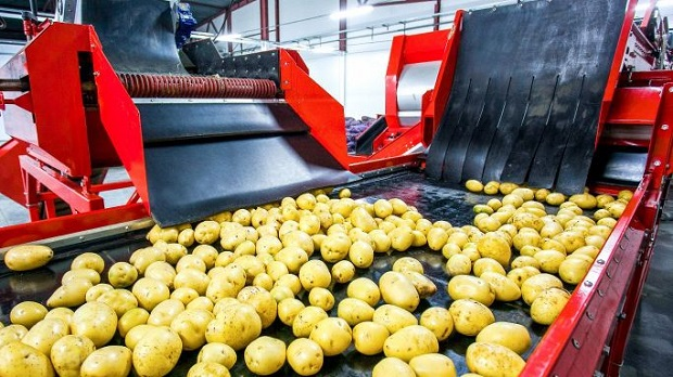 Effective Increment in Trends of Processed Potato Market Outlook: Ken Research