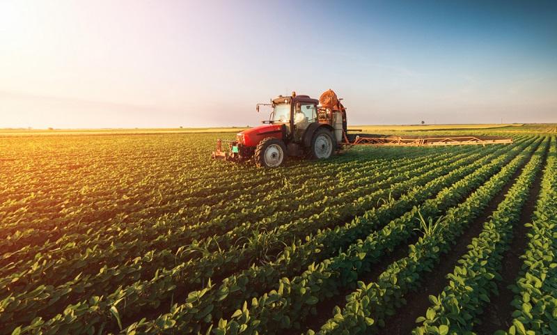 Croatia Agriculture Market, Croatia Agriculture Industry: KenResearch