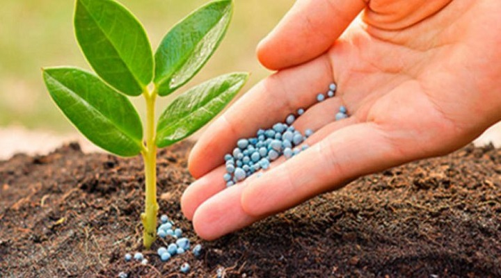 Prominent Increment across Worldwide Agricultural Micronutrients Market Outlook: Ken Research