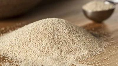 Future Growth of Global Feed Yeast Market Outlook: Ken Research