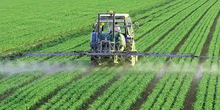 Global Water-Soluble Fertilizers Market Outlook: KenResearch