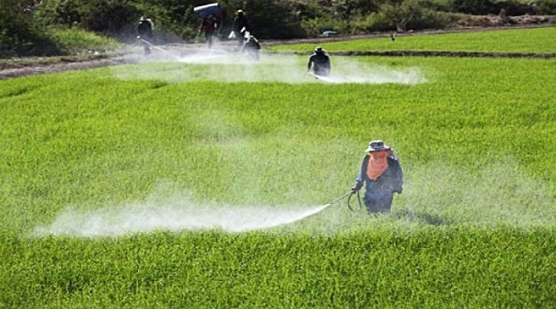 Significant Growth in Scenario of Crop Protection Market Outlook: KenResearch
