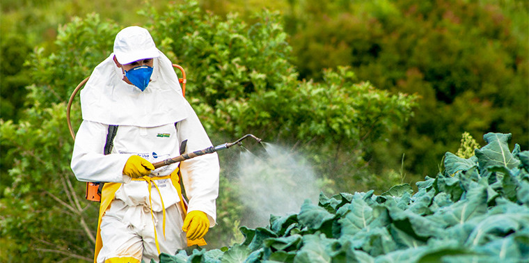 Global Organic Pesticides Market Research Report, Major Players, Analysis, Future Outlook: KenResearch