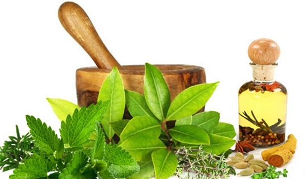 Growth of Foodservice Industry Expected to Drive Global Herbs Market: KenResearch